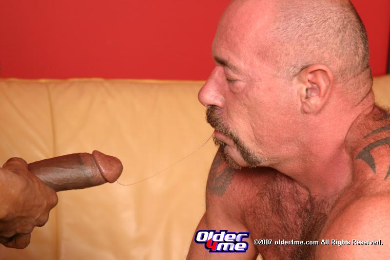 gay black cock blowjob pornmd